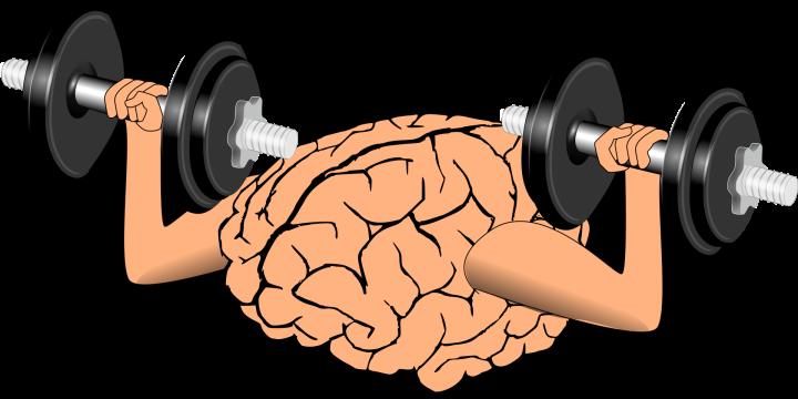 brain-1295128